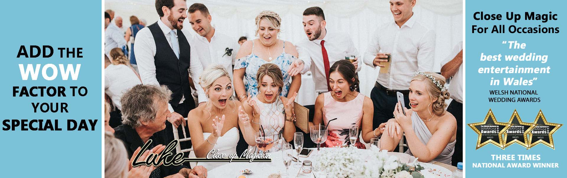 Bride and guests enjoying wedding entertainment